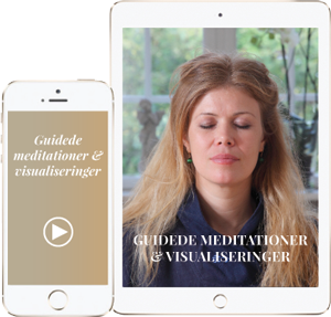 Guidede meditationer og visualiseringer lille